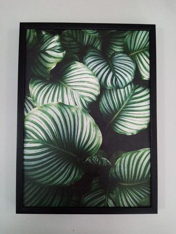 Картина на холсте листья. Принт