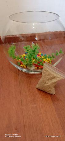 Аквариум новый кислороды бар, декоративный водоросли, камни, корм