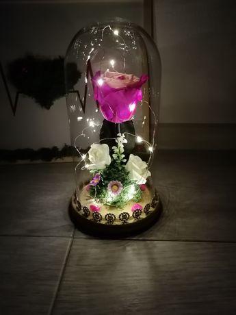 Trandafiri criogenati în cupola cu leduri ideea perfectă de cadou 100