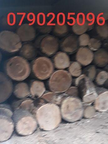 oferta lichidare de s lemne de foc esenta tare la 250 lei m 1*1*1