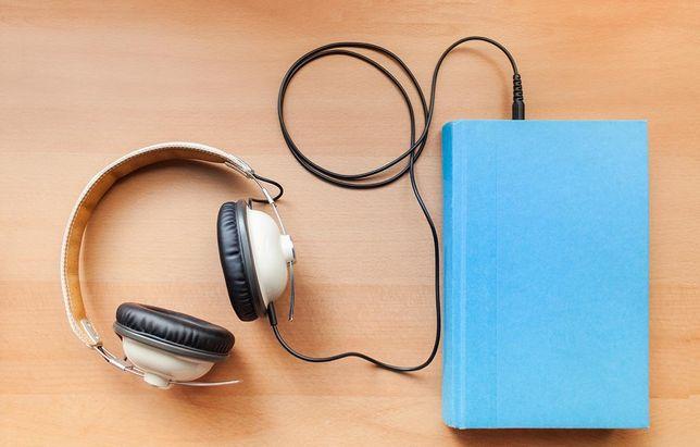 Преобразователь книги в аудиокнигу без интернета. Красивый голос