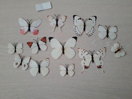Fluturi decorativi 3D cu magnet albi
