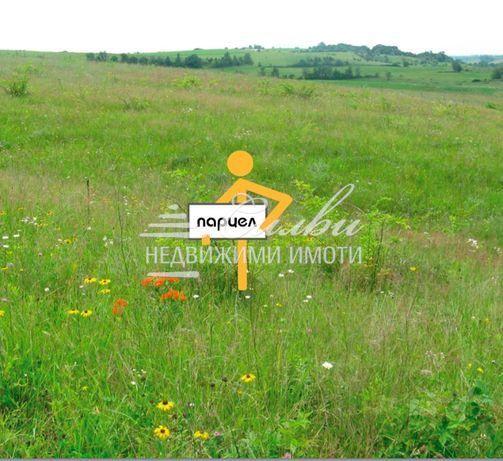 Равен ПАРЦЕЛ с площ 950 кв.м. – кв.Дивдядово
