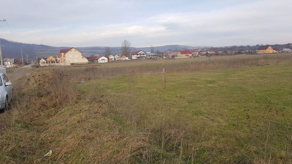 Vând teren loc de casă Uriu - imagine 1