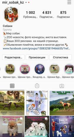 Группа любителей собак кз