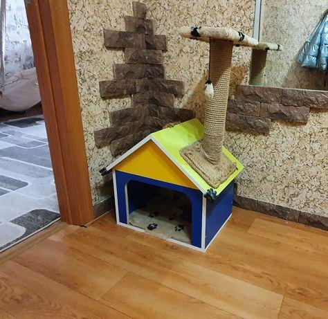 Коктеточка для кошек