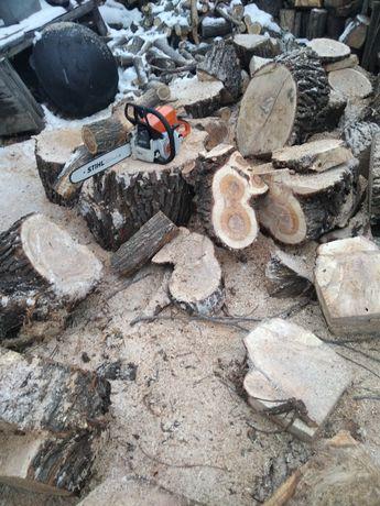 Пи́лим деревья любые