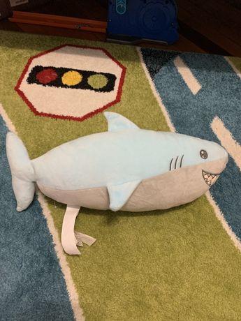 Акула LC waikiki