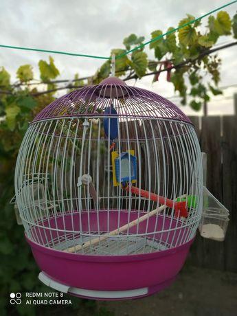 Сетка для попугаев
