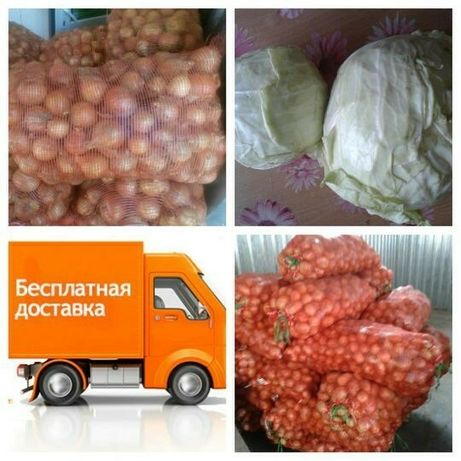 Картофель Свежий Местный Бесплатная доставка Костанай - Рудный