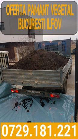 Oferta pamant negru vegetal de padure pentru gazon florii curte