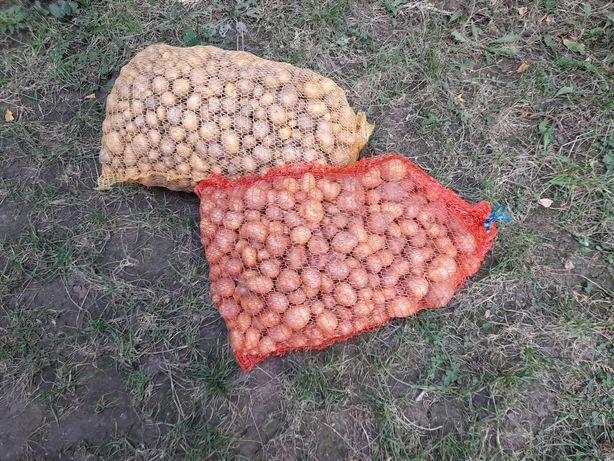 Vand cartofi pentru animale