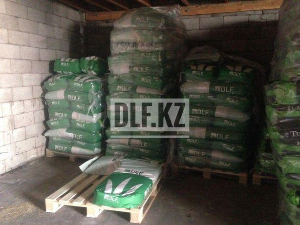 Купить газонную траву DLF Trifolium (10 кг)