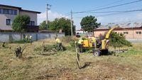 Curatare mecanizat manual defrisare cosire evacuare tocare vegetatie