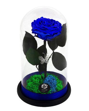 Trandafir criogenat alb livrare gratuita Bucuresti
