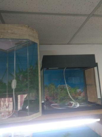 Аквариум с фильтром и лампой.Навои Торайгырова