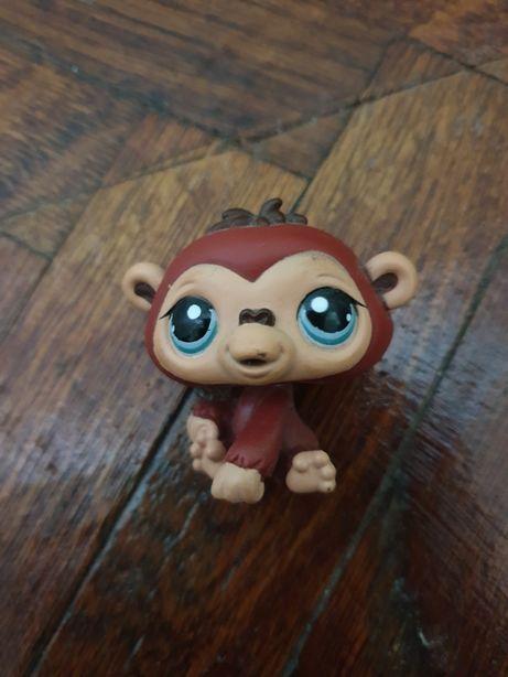 Figurina Goriluta LPS Littlest Pet Shop