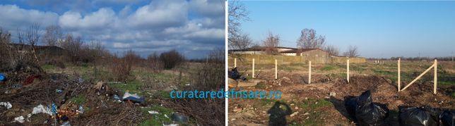 Curatare terenuri, defrisare, tocare crengi si vegetatie