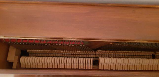 Pianina Rosenkranz