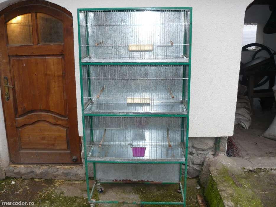 Vand custi pentru pasari