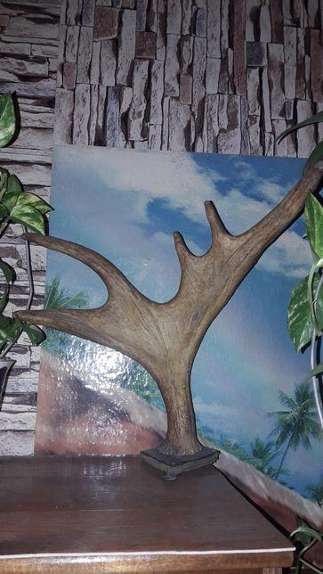 Декоративные оленьи рога