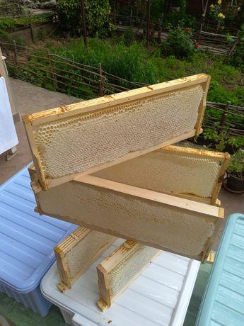 Акациев мед на пита