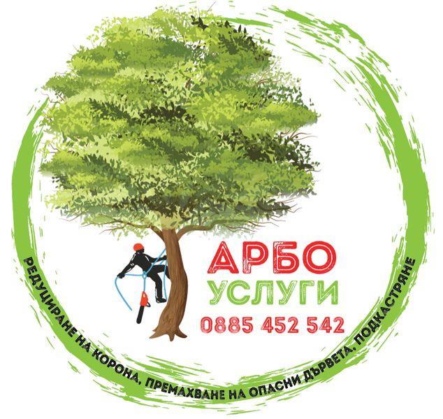 Премахване на опасни дървета, оформяне короната на вашето дърво - АРБО гр. Велико Търново - image 1