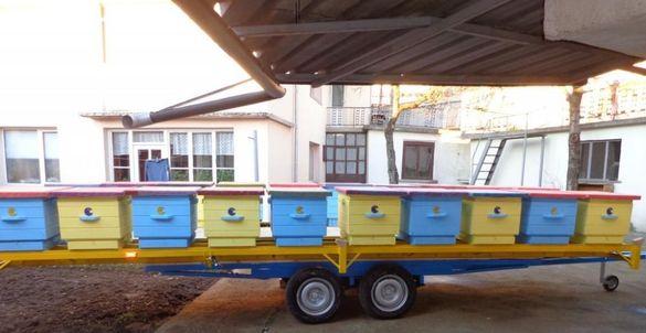 Пчеларска Платформа