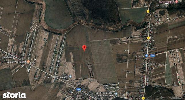 Teren 5000 mp in Balotesti Judetul Ilfov