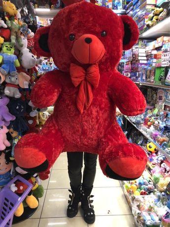 Urs de plus ursulet gigant urs enorm urs mare