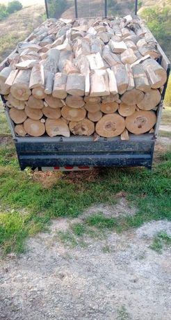 PRET AVANTAJOS lemne de foc esenta tare uscate și verzi