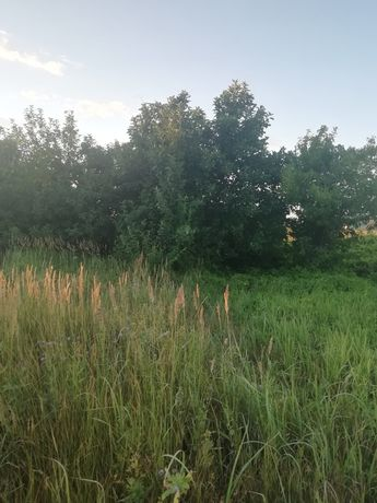 Продажа дачного участка, Галицино, 6 км от с. Дарьинское