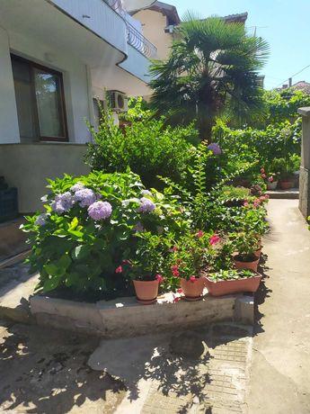 Къща за гости Полименови