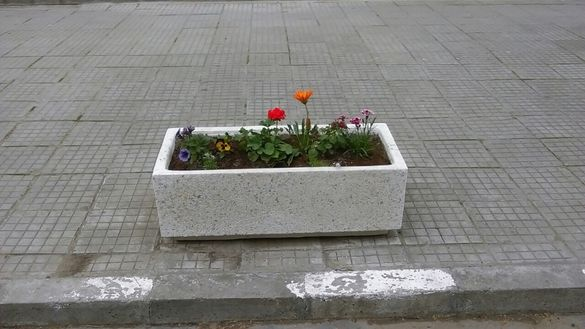Доставка на бетонови кашпи/саксии
