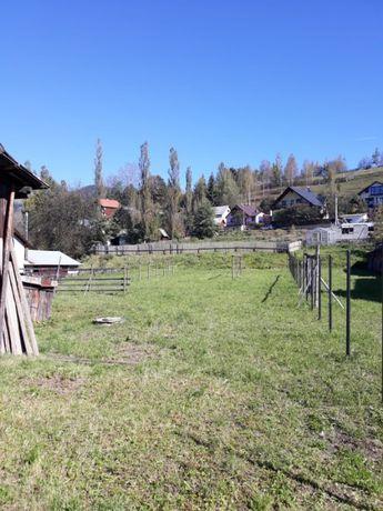 Vând teren Vatra Dornei