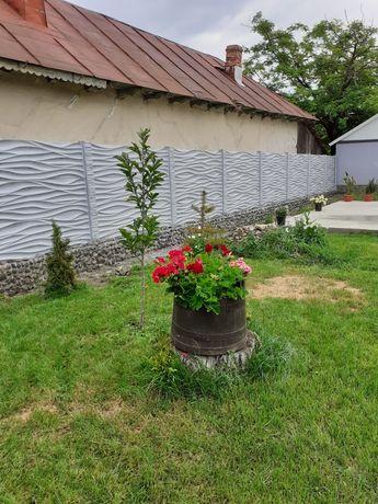 Gard de beton diferite modele
