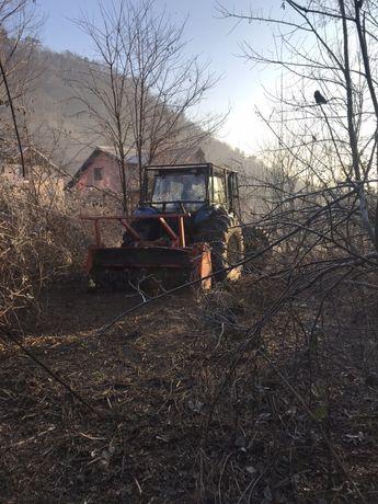 Defrisari terenuri, curatat teren, defrisare teren