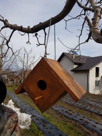 Căsuțe păsărele sălbatice