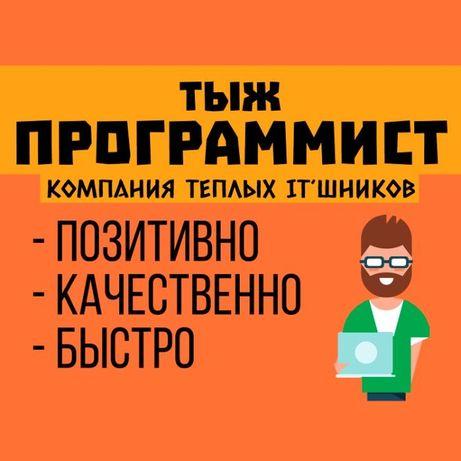 ТЫЖ ПРОГРАММИСТ на выезд   Установка ПО   Windows   Office