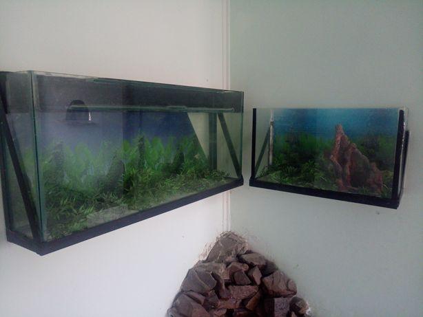 Продам два аквариума