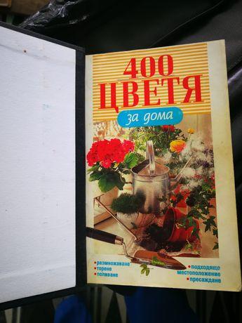 книга - 400 цветя за дома