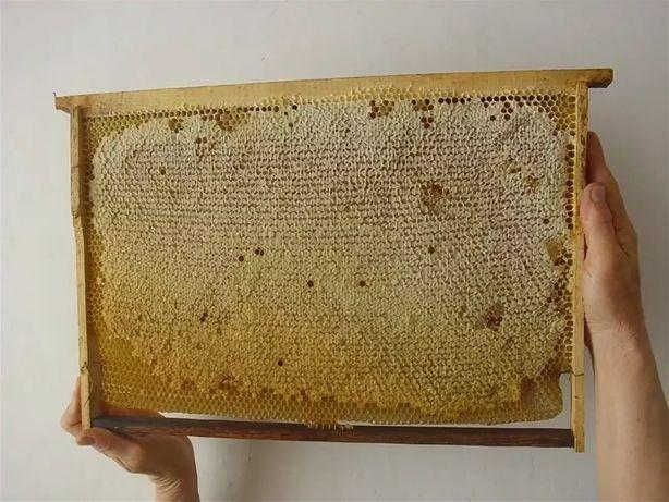 Сотовые рамки со свежим медом 2021г.