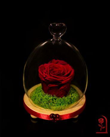 Вечна ЕСТЕСТВЕНА роза в стъкленица - незабравим подарък