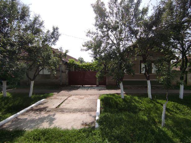 Casa de vânzare in Nadab
