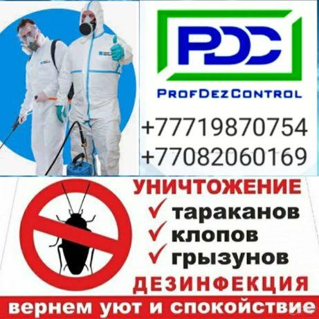 Компания  ProfDezControl  услуги дезинсекции,дезинфекции.