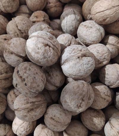 Продаю грецкий орех