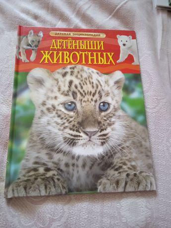 """Детская энциклопедия """"Детёныши животных"""""""