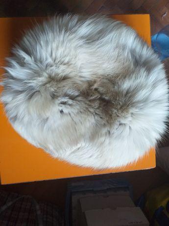 Vând căciulă de vulpe polară