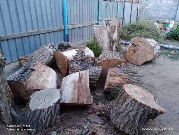 Продам дрова  карагач