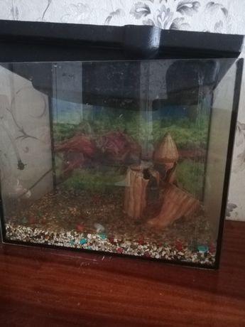 Продам аквариум на 20 л